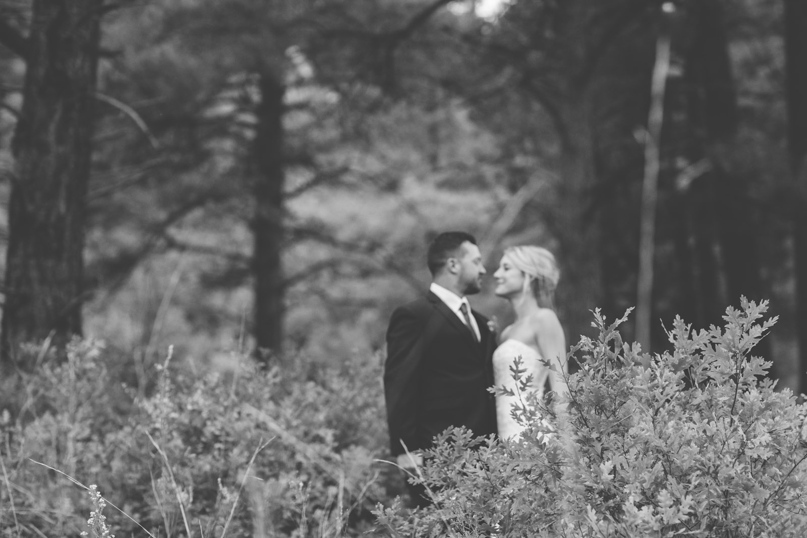 beautiful bride and groom photojournalist portraits at elopement wedding in durango colorado forest